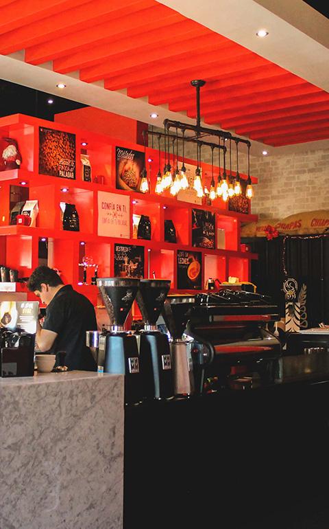 dinastia-12-plaza-rio-franquicia-mexicana-de-cafe