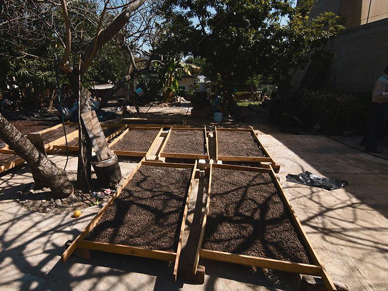 Franquicias en Tijuana: cláusulas que no deberían faltar en un contrato